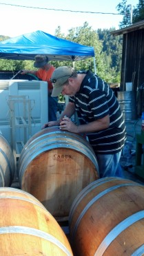 Paul the Winemaker in Action