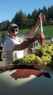 Paul is pressing Chardonnay