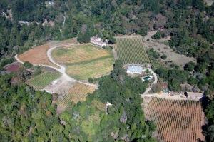 Silvertip_winery-aerial